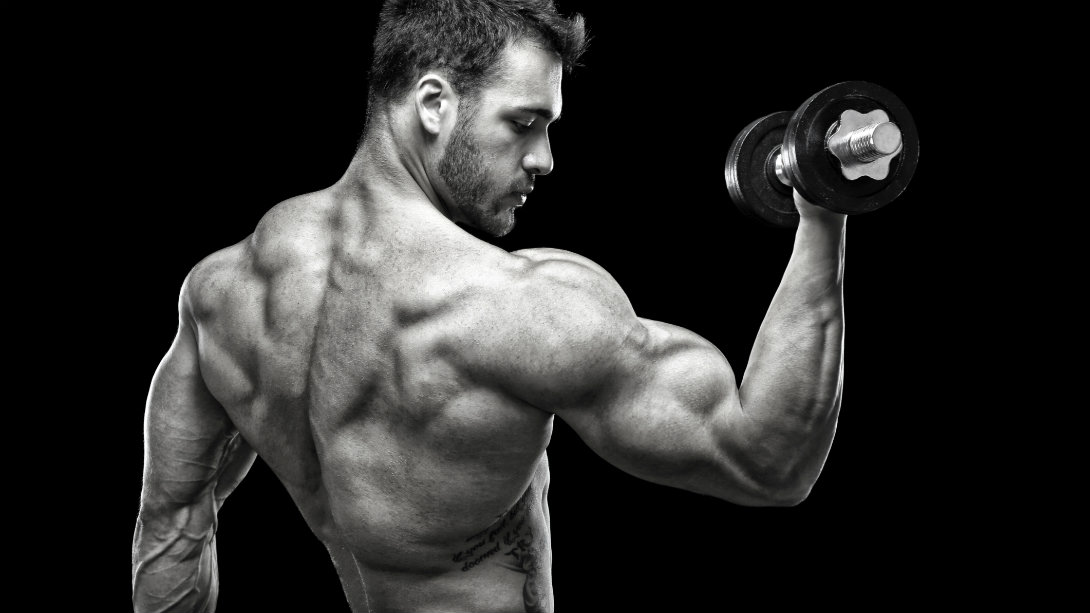 Muscles And More! The nutrition blog that stands out the most on the net!